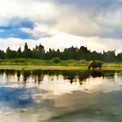 Yellowstone River - Watercolor by Dane Shakespear
